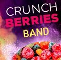 Crunchberries - Cranberries Tribute Band
